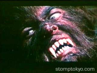 A picture from Werewolf vs Vampire Woman